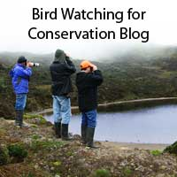 Birding  Ecuador for Conservation